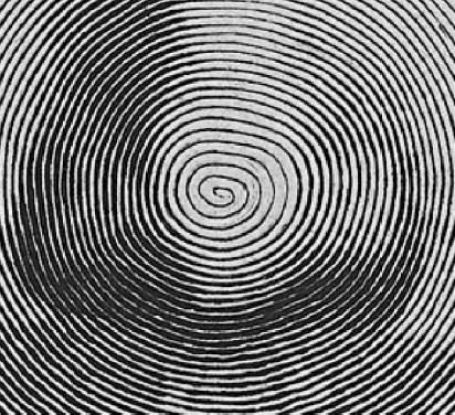 Mellan-detail-spirale