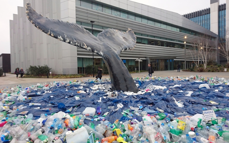 baleine-plastique-ocean-pollution
